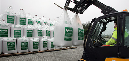 Maximize Winter Barley Yields with Granular-Lime