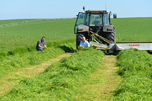 Kilwaughter Lime improves soil fertility, tractor in field.