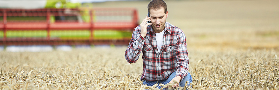 Technical support, man in field on phone